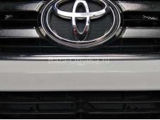 Защитная сетка на Toyota Hilux с 2015 года выпуска